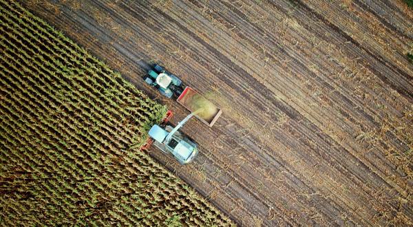 """Ripresa dei versamenti per le aziende agricole: chiarimenti Inps sulla contribuzione """"convenzionale"""""""
